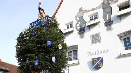 Ein bisschen Fasnacht: Die Wasamolle haben wieder den städtischen Christbaum zum Narrenbaum recycelt und mit Masken geschmückt.
