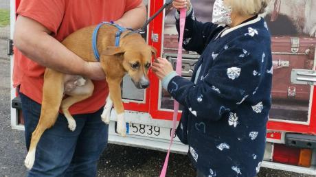 Das Bild zeigt Hella Braun von Astrellas Hunde-Hilfe bei einer Übergabe.