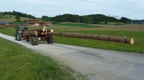 Langholzfuhrwerk.jpg
