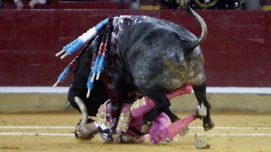 Horrorszenen bei Stierkampf in Spanien: Stier spießt