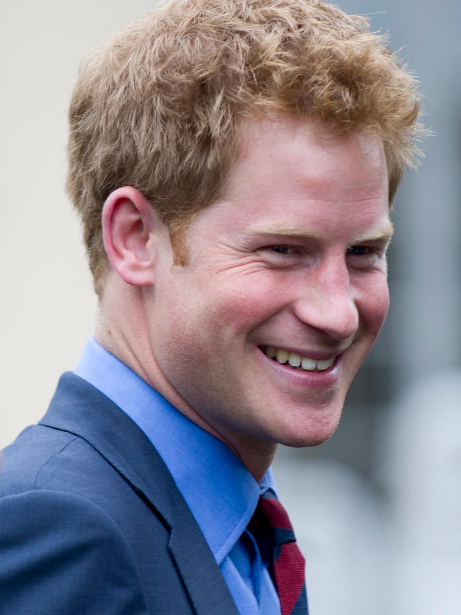 Monarchie: Prinz Harry bekommt Nacktfoto-Unterstützung im