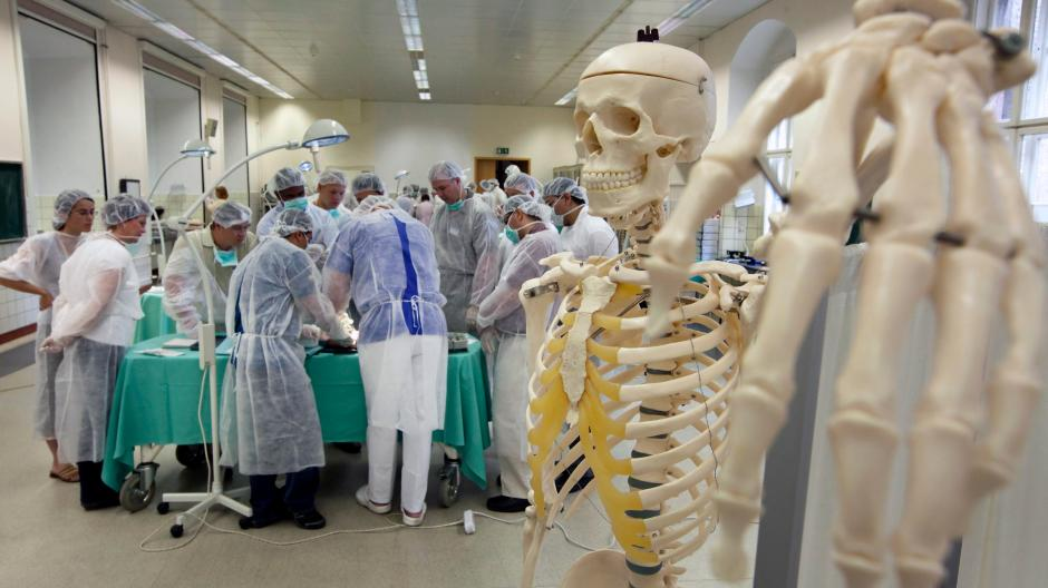 Körperspenden: Woher die Leichen der Medizinstudenten kommen ...