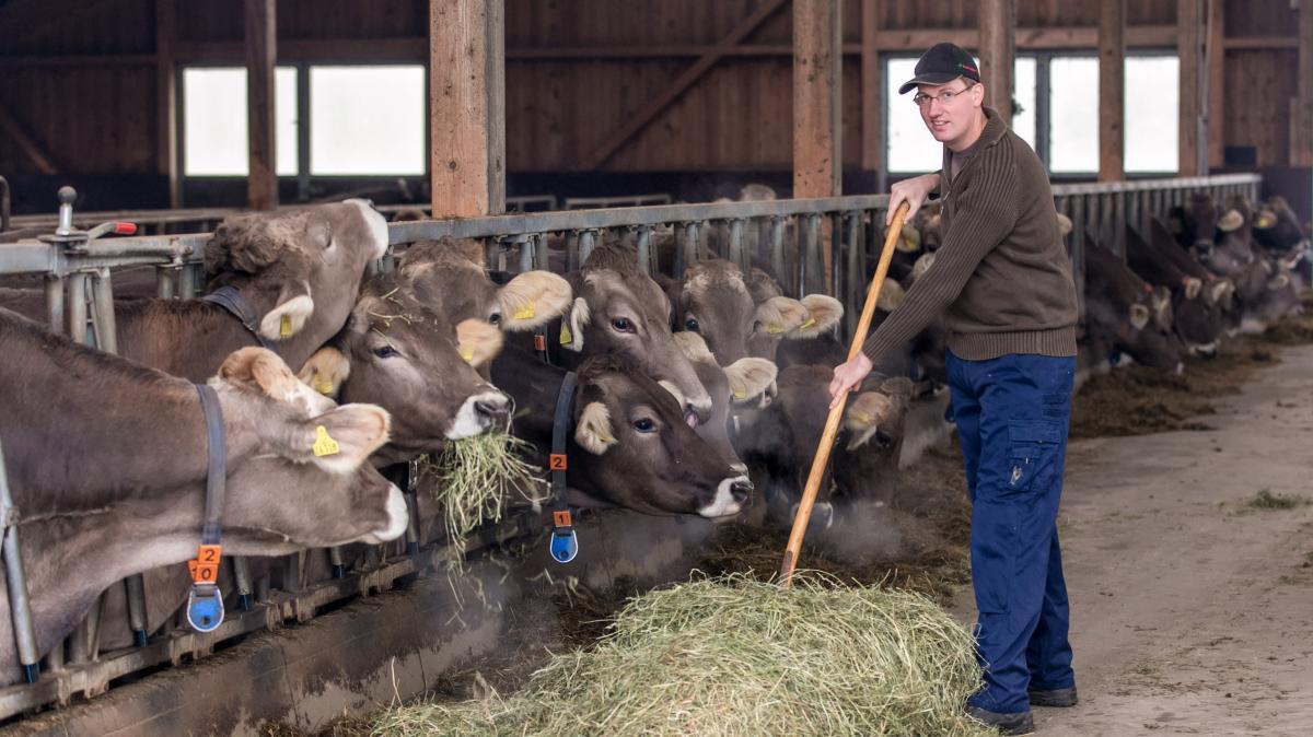 Bekanntschaften landwirtschaft