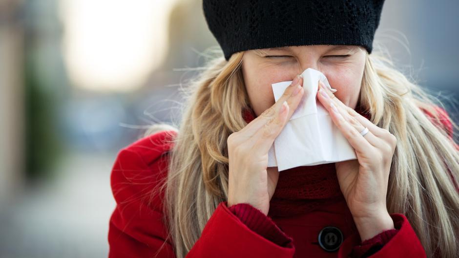 Heuschnupfen: Pollenflug an Weihnachten: Das müssen Allergiker jetzt ...