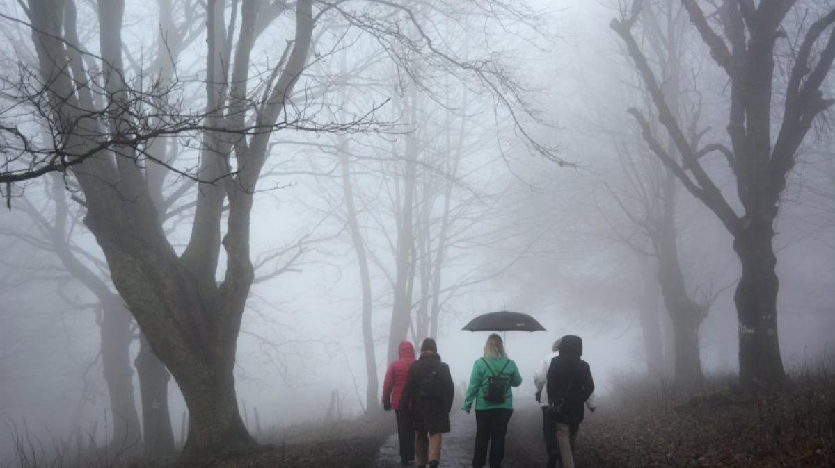 Wetterprognose Augsburg