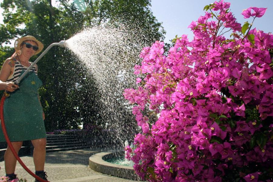 Wasser So Konnen Sie Beim Giessen Sparen Donauzeitung