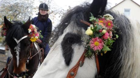 Bei den traditionellen Leonhardiritten sind die Pferde immer hübsch geschmückt. Archivbild