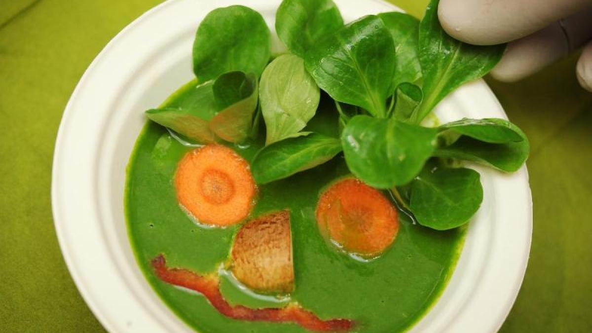 Vegetarismus Vegetarische Ernahrung Was Bringt Der Verzicht Auf Fleisch Augsburger Allgemeine