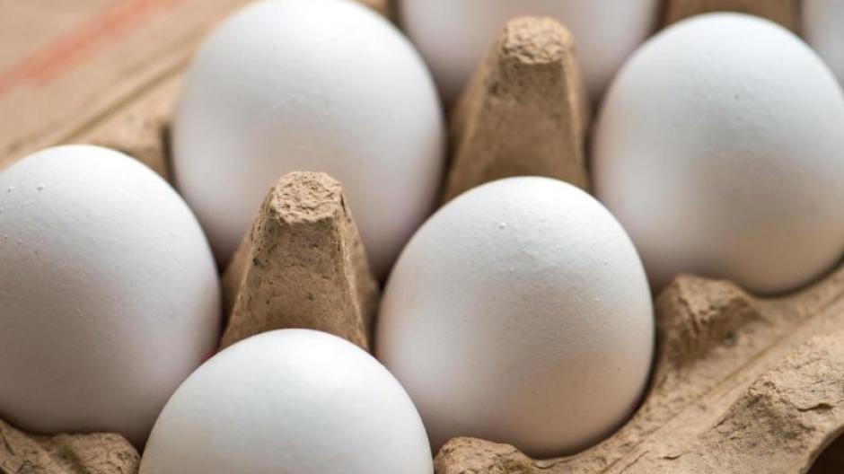 Kühlschrank Ei : Weiß verglast porzellan ei tablett hält eier ei halter