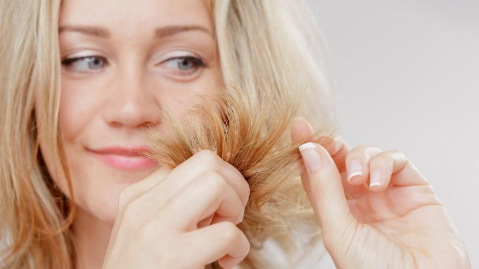 Spliss Lange Haare Brauchen Alle Zwei Bis Drei Monate Einen