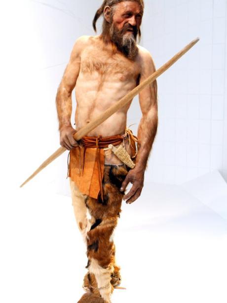 """Résultat de recherche d'images pour """"Ötzi"""""""