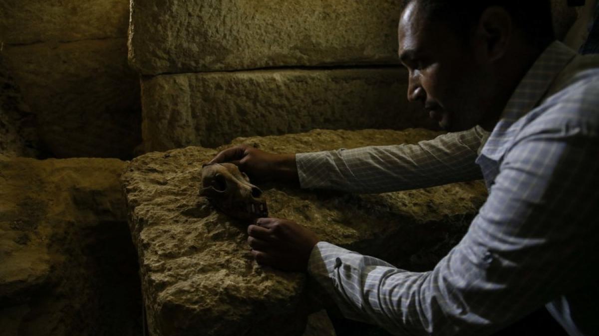 arch ologie deutsche forscher finden antike totenstadt in gypten wissenschaft augsburger. Black Bedroom Furniture Sets. Home Design Ideas