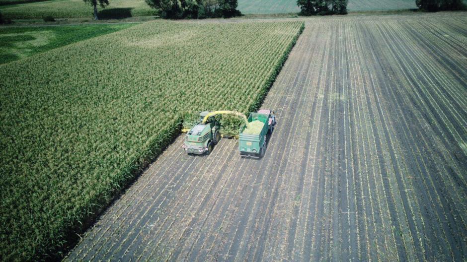 Landwirtschaft: Mehr Regen wäre ein Segen für den Landkreis ...
