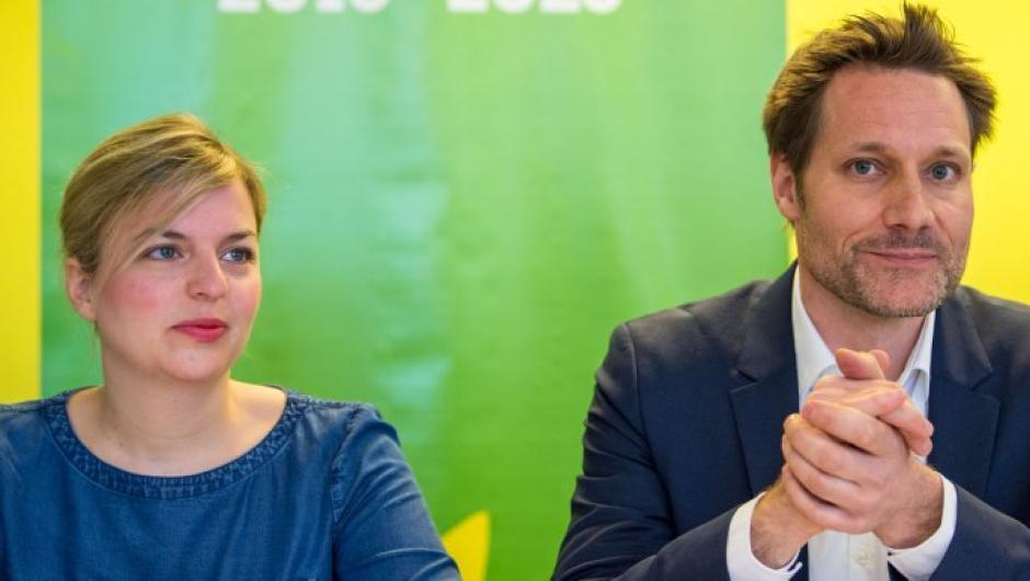 Programmentwurf der Grünen zur Landtagswahl