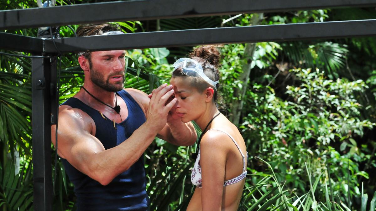 Ibes 2019