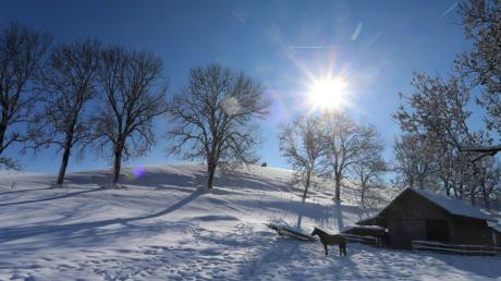 04.02.2019, Bayern, Obergünzburg: Ein Pferd steht im Sonnenschein auf einer Koppel im Schnee . Foto: Karl-Josef Hildenbrand/dpa +++ dpa-Bildfunk +++