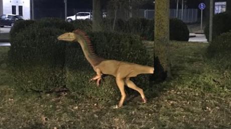 Die Polizei Beilngries hat einen Dinosaurier an einem Kreisverkehr in Abensberg entdeckt, der ein paar Tage vorher aus dem Dinopark in Denkendorf verschwunden ist.