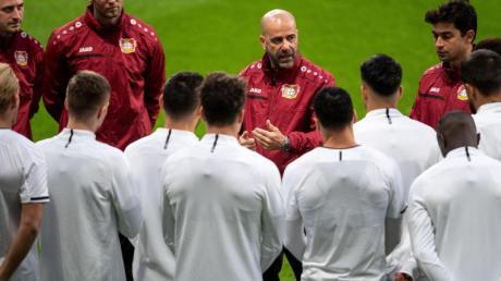 Leverkusens Trainer Peter Bosz (M.) bereitet seine Mannschaft in Madrid auf das Spiel vor. Foto: Marius Becker/dpa