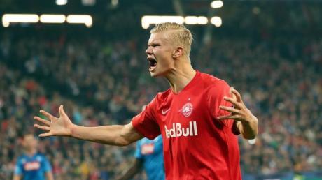 Viele Fußball-Clubs wollen ihn verpflichten Salzburgs Stürmer Erling Haaland.