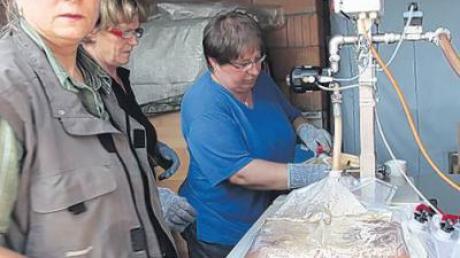 Der Apfelsaft wird entweder erhitzt und dann in PE-Beutel abgefüllt, wie Ursula Schmidt (links) erklärt. Er kann auch direkt zum Mosten ins Fass gezapft werden.