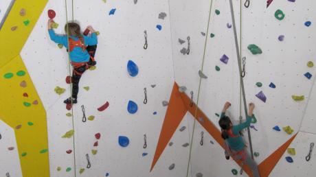 So sehen Haltegriffe an Kletterwänden aus. Ein Unbekannter schraubte diese von der Kletterwand einer Schule in Hochzoll ab. Symbolbild