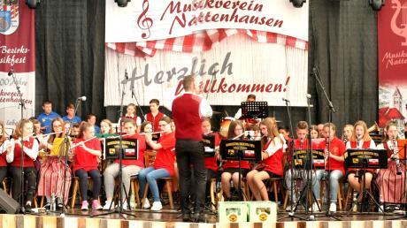 """Bezirksdirigent Patrick Scheel dirigierte beim gemeinsamen Finale der Jungmusiker aus drei Nationen das Stück """"Freude schöner Götterfunken""""."""