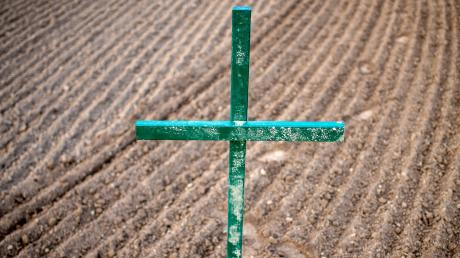 Viele Landwirte haben auf ihren Wiesen oder Feldern grüne Kreuze als Ausdruck des Protests gegen das bereits beschlossene Begleitgesetz zum Volksbegehren für mehr Artenschutz aufgestellt. Sie sind es leid, zum Sündenbock für den Artenschwund in der Flur allein verantwortlich gemacht zu werden. (Symbolfoto)