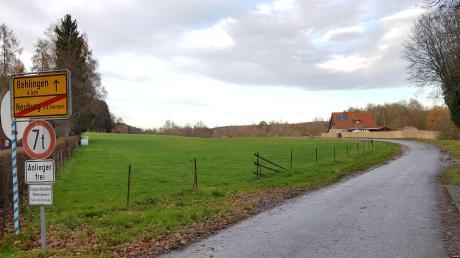 An dieser Stelle am nordwestlichen Ortsausgang von Neuburg Richtung Behlingen könnte ein Baugebiet entstehen. Dies signalisierte Bürgermeister Rainer Schlögl bei der Bürgerversammlung.