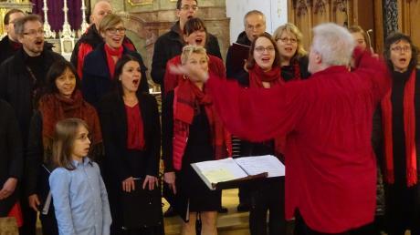 Das Vokalensemble dimuthea aus Dresden unter der Leitung von Prof. Reinhart Gröschel überzeugte beim gemeinsamen Konzert mit dem Liederkranz Krumbach. Links vorn: Nachwuchssänger Albert Heimke