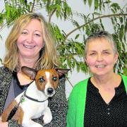 Barbara Habermann und Renate Janik sind spezialisiert auf die Behandlung von Suchtkrankheiten. Therapiehund Maya wird bei der neuen Info-Mot-Gruppe allerdings nicht dabei sein.