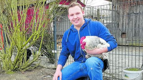 """Der 20-jährige Langenhaslacher Tommy-Lee Jeckle hat ein seltenes Hobby. Er züchtet Hühner der Rasse """"Sundheimer""""."""