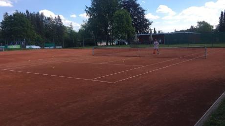 Tennistrainer Benni Schmid auf dem Platz von Rot-Weiß Krumbach. Links von ihm sieht man, dass andere Tennisplätze noch nicht hergerichtet sind.