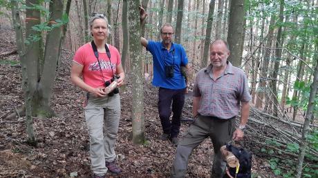 Mit seiner ausgebildeten Spürhündin Xina durchsucht Hans Döbeli (rechts) aus dem schweizerischen Aarau den Schönebacher Wald nach Spuren und Bohrlöchern des Laubholzbockkäfers. Interessierte Zuschauer sind dabei Projektleiterin Ilka Heckner und Revierförster Hubert Forstner.