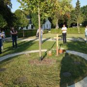 Naturnahe Baumbestattungen sollen in Zukunft auf beiden Krumbacher Friedhöfen möglich sein. Der Bauausschuss der Stadt traf sich zum Ortstermin.