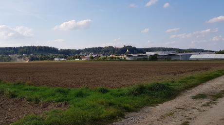 Noch ist es ein Acker, Ende des Jahres sollen die Erschließungsmaßnahmen für Wasser,Kanal und Straße im künftigen Industriegebiet Neuburg-Süd weitgehend abgeschlossen sein.