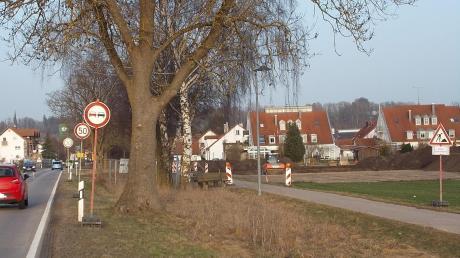 Der Ortseingang von Thannhausen von Westen her kommend wird sich komplett verändern im Zuge des Deichbaus für den Hochwasserschutz. Jetzt wurde rechts neben der alten B300 der Oberboden abgeschoben. Die Deichbaustelle wird sich am Stadtrand zunächst im Süden der Straße (im Bild rechts) abspielen.