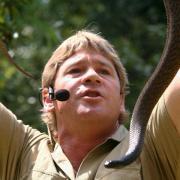 Der Dokumentarfilmer Steve Irwin mit einer Schlange (2006). Foto: How Hwee Young