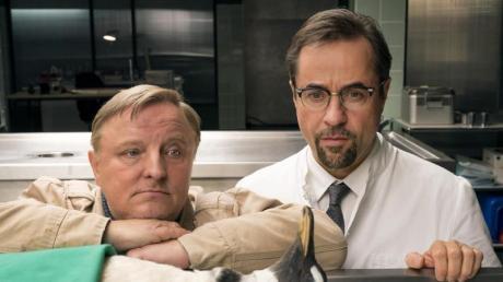 Highlight der Tatort-Saison: Ein Pinguin in der Rechtsmedizin bei Kommissar Frank Thiel (Axel Prahl) und Prof. Boerne (Jan Josef Liefers) in Münster.