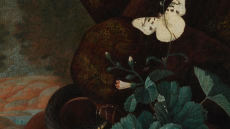 Stillleben von Johann Falch