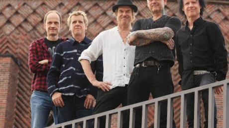 Die Toten Hosen melden sich mit neuem Album zurück und erobern sofort die Chartspitze.