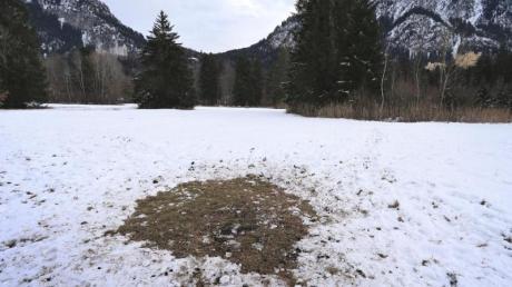 Eine kahle Stelle im Schnee markiert unterhalb des Schlosses Neuschwanstein den Platz, an dem vor einigen Tagen eine rätselhafte Stele entdeckt wurde.