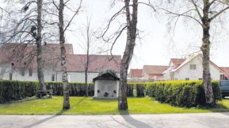 Einem Antrag auf Fällung von vier Birken Am Alten Sportplatz in Holzhausen hat der Gemeinderat Igling nicht stattgegeben.