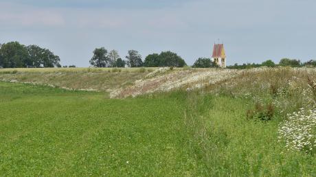 Derzeit besteht das Dammbauwerk östlich von Scheuring (im Hintergrund die Pfarrkirche St. Martin) aus zwei Geländeaufschüttungen. Weitere bauliche Maßnahmen stehen an. Die Kosten liegen laut ersten Schätzungen bei rund 700.000 Euro.