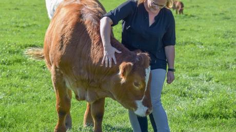 """Christine Festner aus Wolfgrub und der Ochse Nini. Die 36-Jährige bietet auf der Festner-Ranch unter dem Stichwort """"Soziale Landwirtschaft"""" seit Kurzem auch Therapien mit Tieren an."""