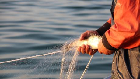 Renkenfischerei(1).JPG