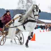 Pferdeschlittenrennen_web-7155.jpg