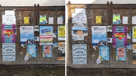 Plakate des Volksbegehrens wurde in Eglingmit der Ankündigung für den FaschingsumzugUntermühlhausen überklebt.