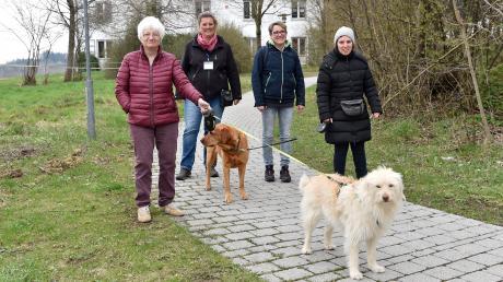 """Petra (von links) lebt in der Wohngruppe St. Barbara in Holzhausen. Sie freut sich darüber, dass sie Maren Agricolas Hund Luz ausführen darf. Agricola ist ebenso Mitglied im neuen Verein """"Besuch mit Hund"""" wie Sabine Mörz. Mit deren Labrador Sammy geht Flavia spazieren."""