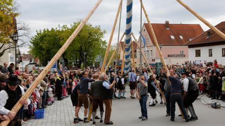 Am 1. Mai werden wieder vielerorts im Landkreis Landsberg die Maibäume aufgestellt. Dieses Archivfoto stammt aus dem Jahr 2017 und zeigt den Dießener Baum.