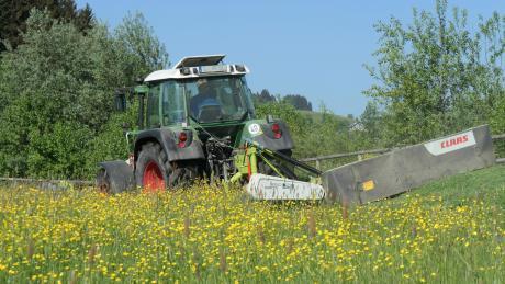 Mit einem T-Führerschein dürfen Jugendliche ab 16 Jahren einen Traktor steuern.